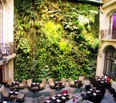 Вертикальные сады. Фото 1