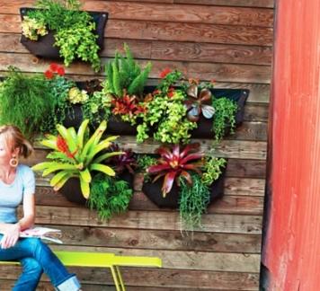 Модульные сады. Фото 1
