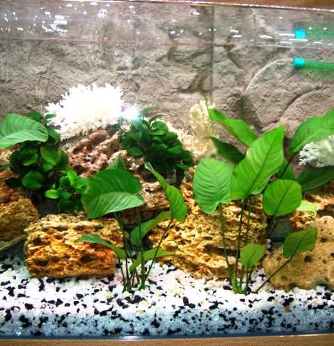 Фото 2. Грунт белый для аквариумов мраморная крошка