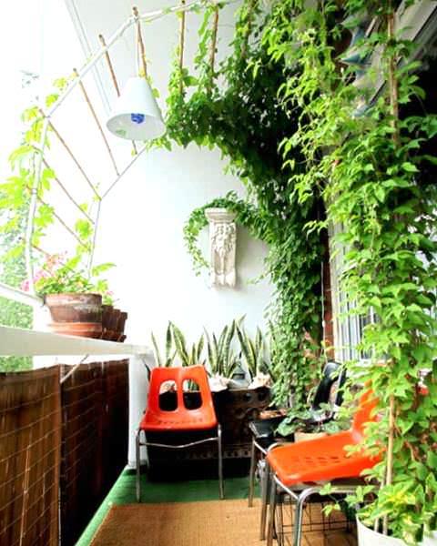 как украсить балкон цветами фото 2