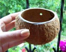 Цветочный горшок из кокосового ореха
