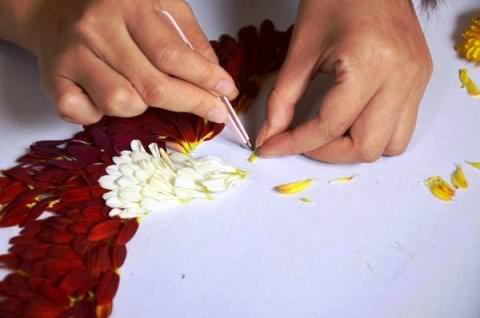Как сделать картину из лепестков цветов фото