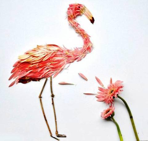 Фламинго из цветов фото