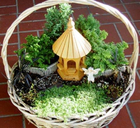 Миниатюрный сад из растений фото