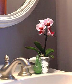 Орхидея в ванной комнате