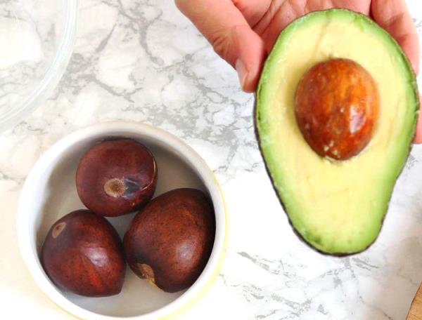 вырастить авокадо фото