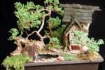 Миниатюрные сады из комнатных растений своими руками